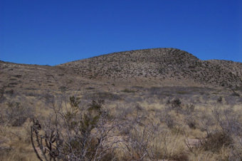 New Mexico Ranches For Sale Bar M Real Estate Selling
